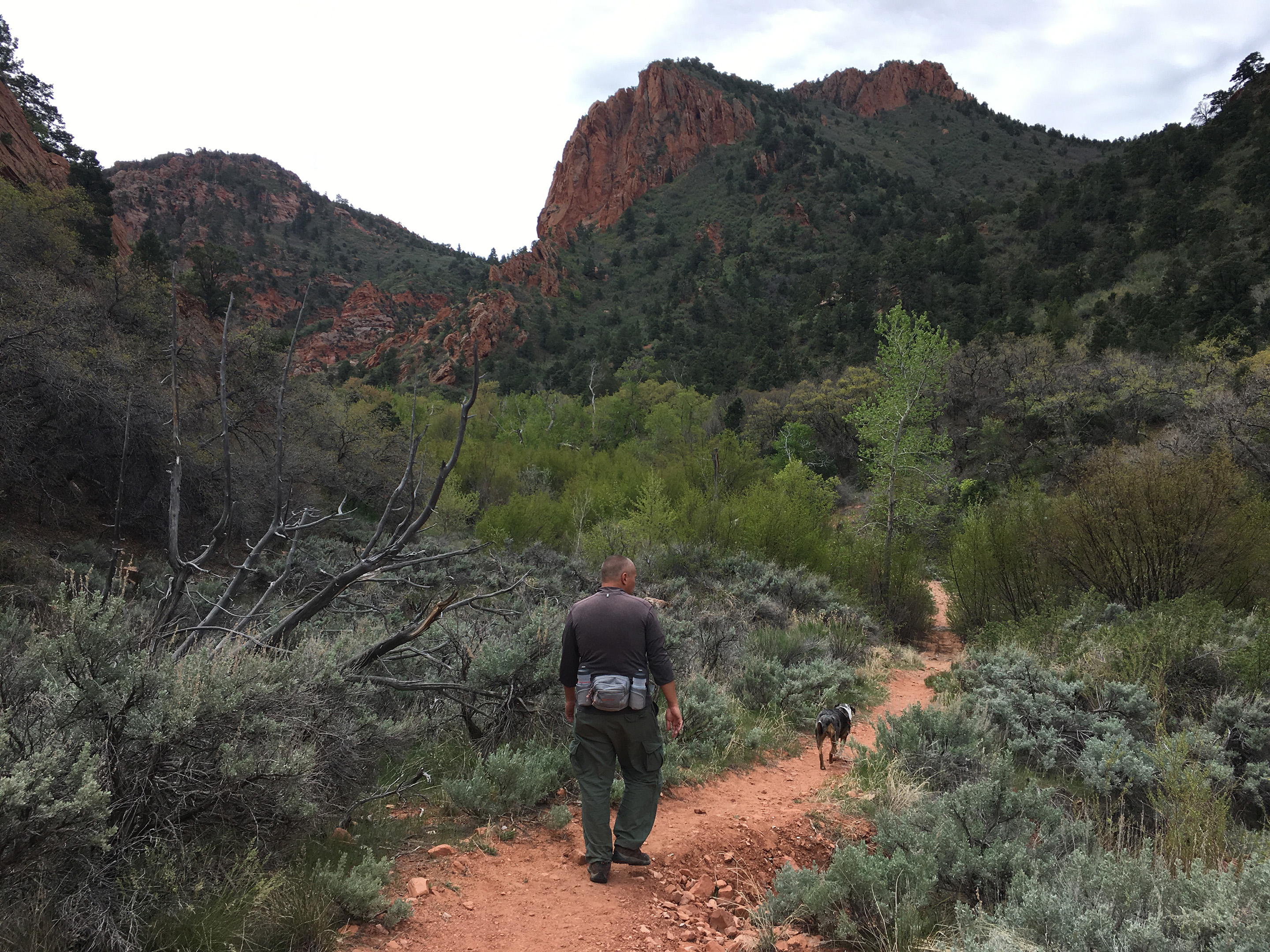 Hiking Spring Creek Canyon