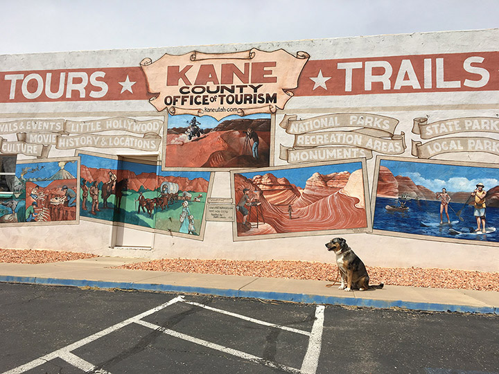 Mural at the Kane County Information Center