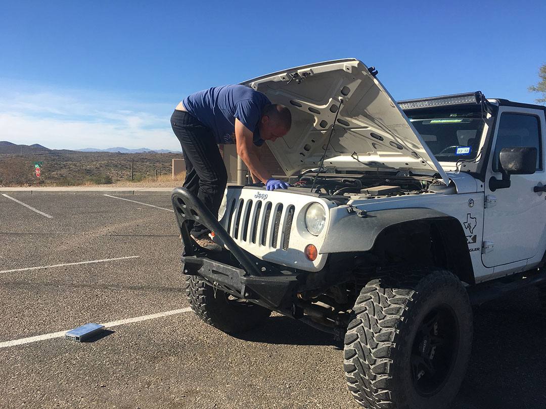 Trying to see a kangaroo rat hiding in the Jeep engine bay