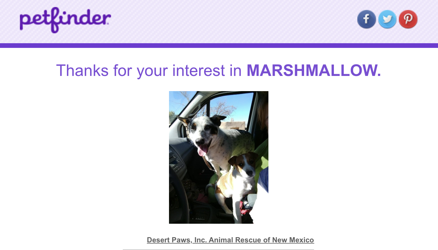 Marshmallow's adoption profile