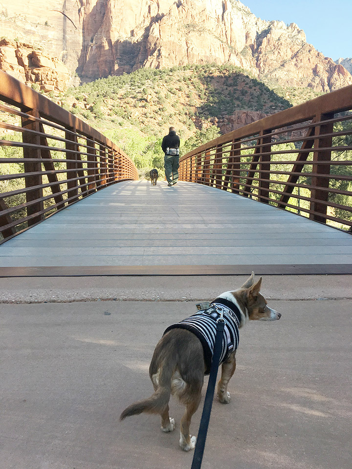 Zion_Bridge