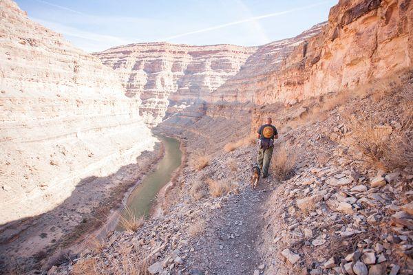 Hike: Honaker Trail