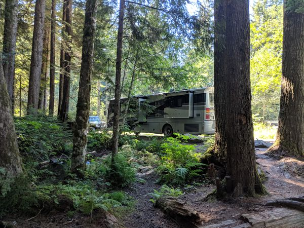 Campsite review: Tinkham Road