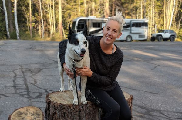Adopting a Dog While Full-time RVing